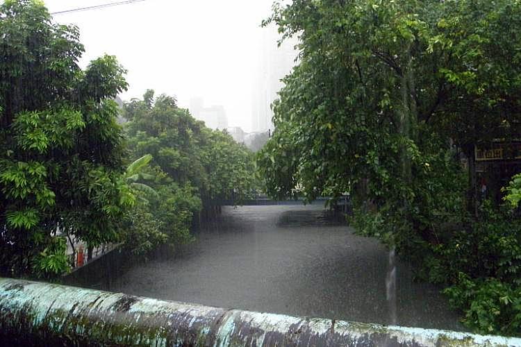 圖片:來當居家王 防登革熱先除住宅積水